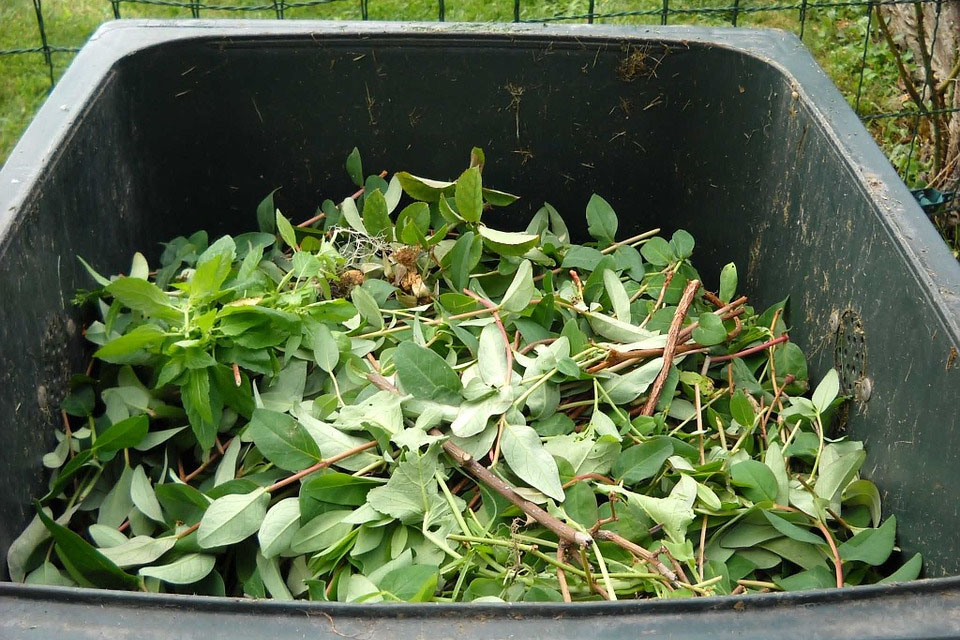 Yard Waste Collection Resumes